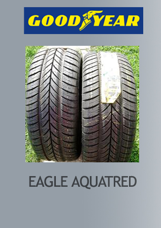 1155 gomma goodyear 205/60r 15 eagle aquatred tl v